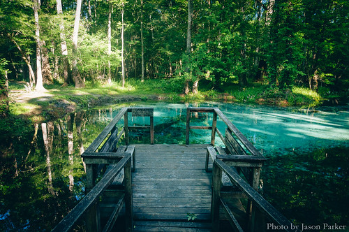 summer green nature water swimming naked landscape florida outdoor scenic springs santefe naturalbeauty polarizer bluespring highsprings gilchristcounty bluespringspark vsco vscofilm nakedspring gilchristblue