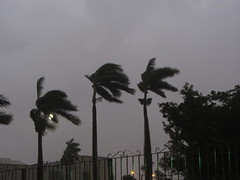 rain starts again