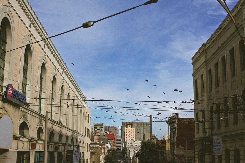 San Fran Day 3 (15 of 21)