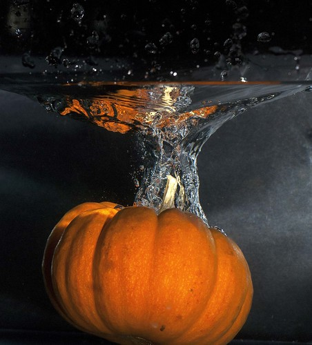 Pumpkin Below the Splash