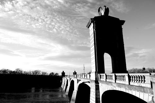bridge blackandwhite bw river concrete downtown historic pa susquehanna nepa wilkesbarre marketstreetbridge afsdxvrzoomnikkor1855mmf3556g