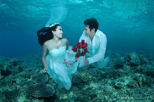 Key Largo Florida Underwater Hotel Florida Hotel Underwater Jules