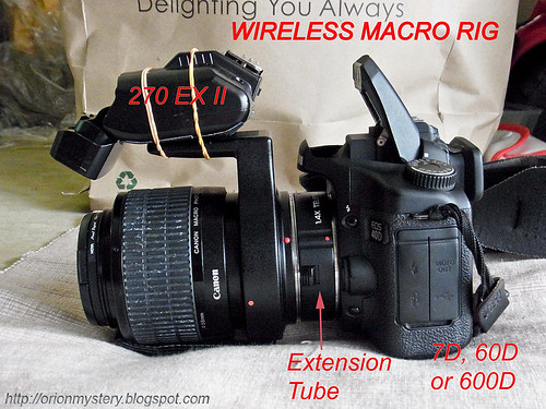 wireless macro rig R0016006 copy