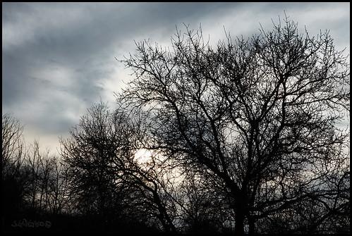 Invierno en Castilla