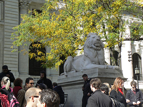 le lion de la bibliothèque.jpg