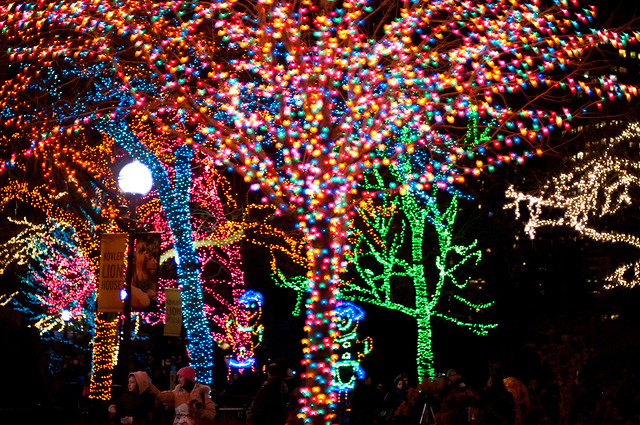 LP Zoo Lights
