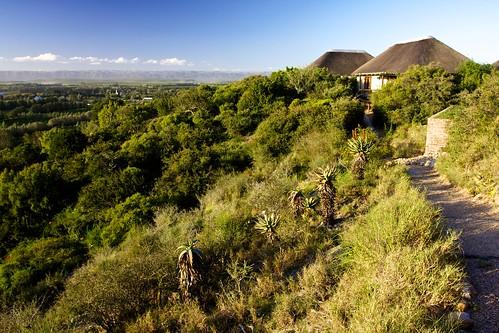 africa southafrica addo hotel nationalpark lodge chalet addonationalpark cruisair hitgeheim hitgeheimlodge