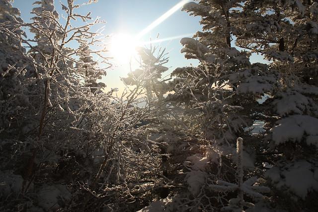 浅間山の夜明け
