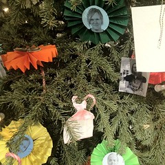 decor(0.0), flower(0.0), floristry(0.0), wreath(0.0), tree(1.0), plant(1.0), christmas decoration(1.0), christmas tree(1.0),