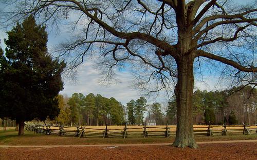 house tree home beautiful landscape virginia nationalpark farm cottage bluesky historic oldhouse va oldhome westmorelandcounty gwashingtonsbirthplace