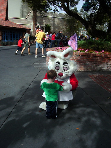 With the White Rabbit