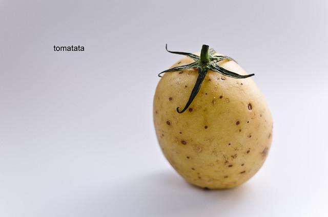 83/366: tomatata