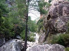 Remontée du Carciara : l'entrée du canyon du Carciara