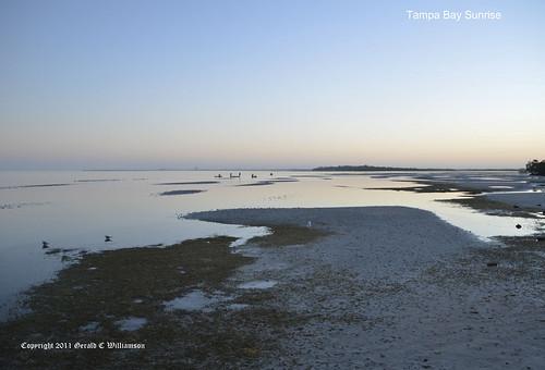 Fishermen at Tampa Bay Sunrise