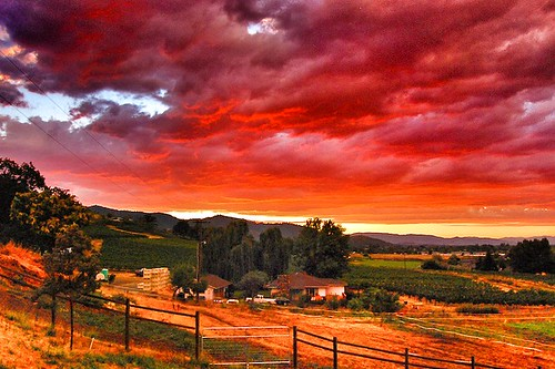 sunset oregon vineyard southern roguevalley