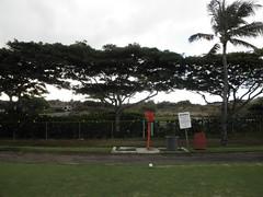 Hawaii Kai Golf Course 044