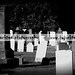 Small photo of Manch Cem
