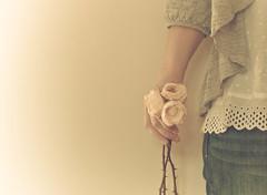 [フリー画像素材] 人物, ボディーパーツ - 手, 薔薇・バラ, 人物 - 花・植物 ID:201201080600
