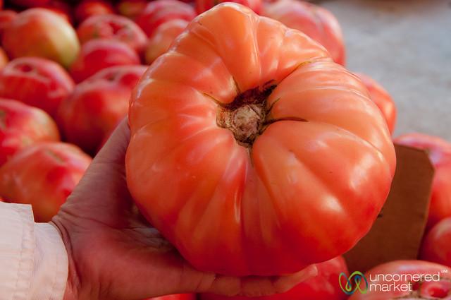Massive Tomato at Heraklion Market - Crete, Greece
