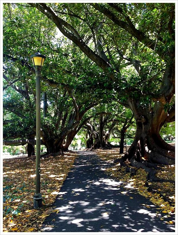Hyde Park01
