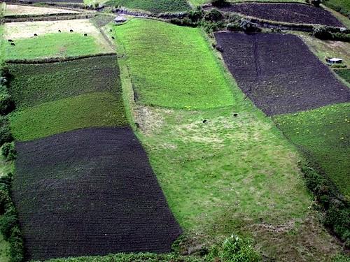 ecuador-farmland