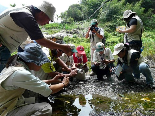 2011.6.30蝴蝶調查進階研習。(圖片來源:特生中心)