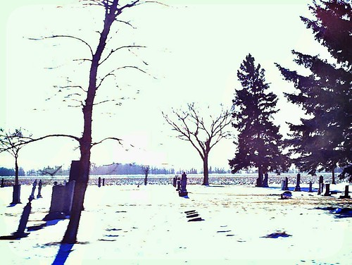 Winter in the Cemetary