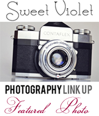 photographylinkupbutton featured