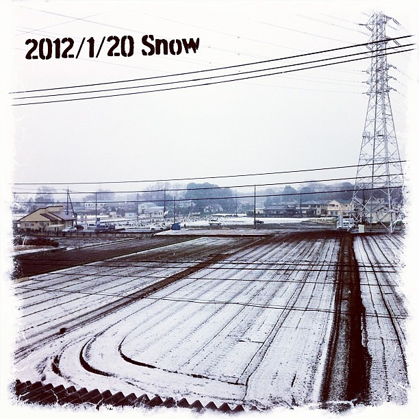 First #snow of the year. 今年の初雪。 #snow #winter #雪 #冬 #初雪