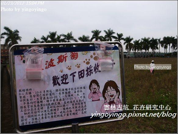 雲林古坑_花卉研究中心20120123_R0050668