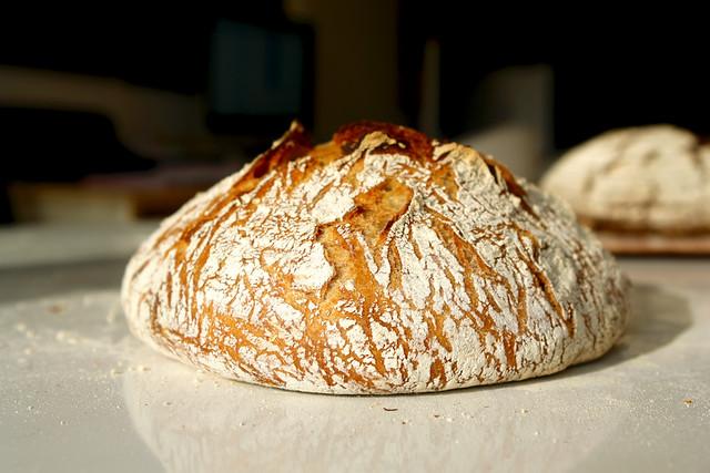 09 coaja no knead