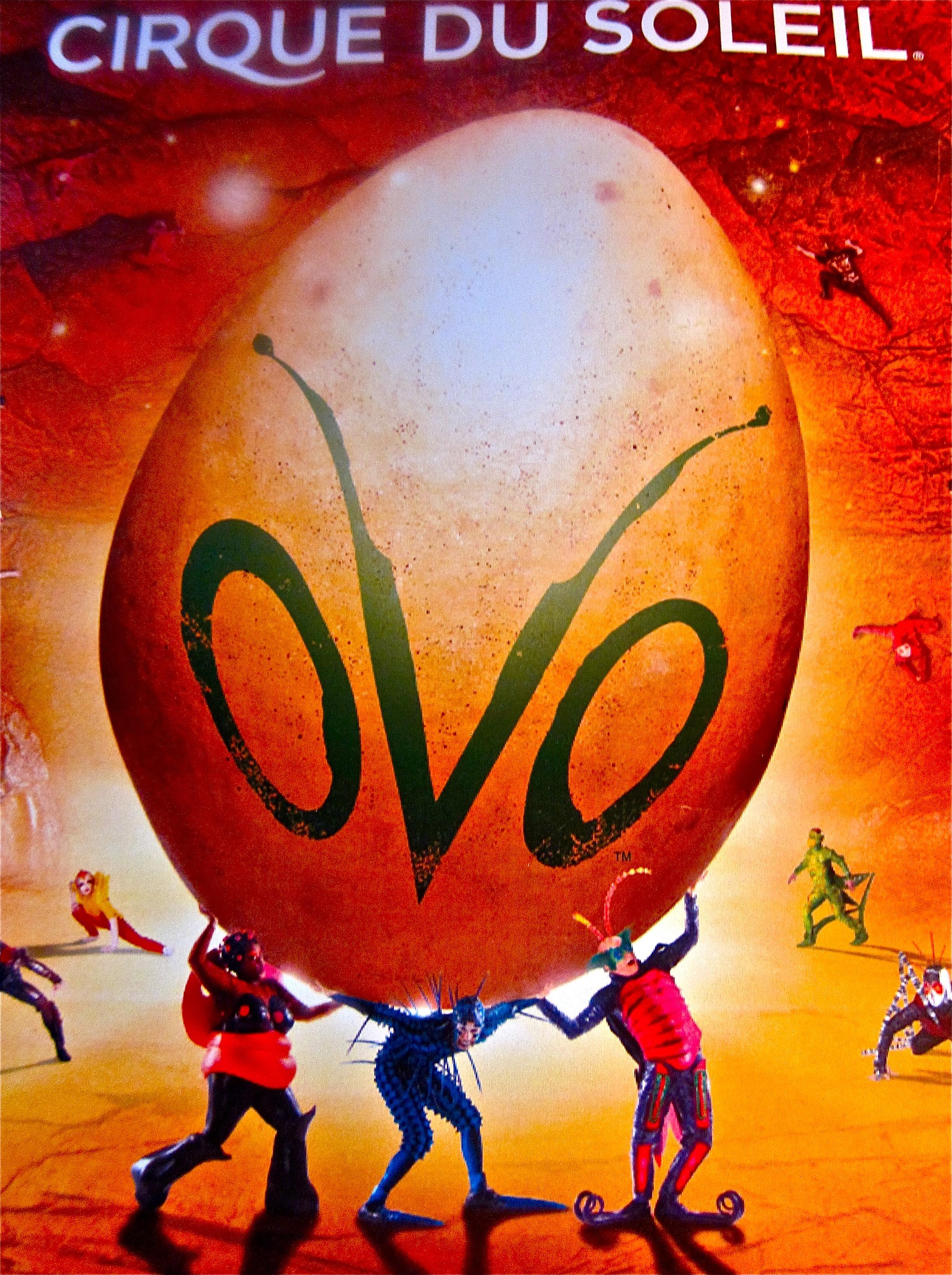 OVO poster