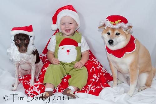 2011-11-27 - Christmas Card-39