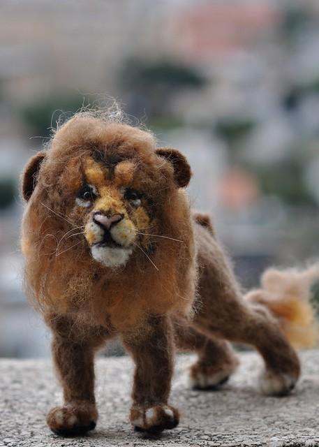custom lions7.