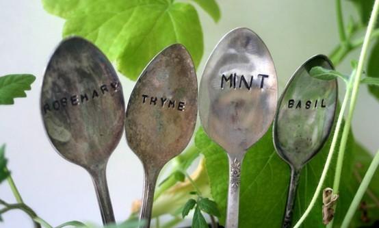 Spoon_017