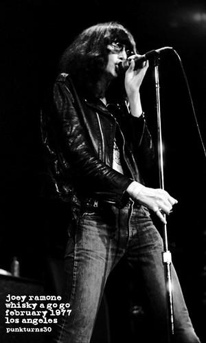 Joey Ramone 1977