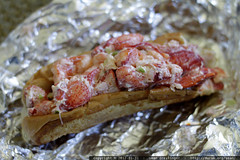 another day, another lobster roll for lunch    MG 8295