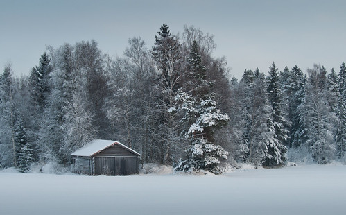 winter snow cold barn forest voitby langkujan