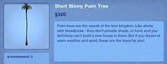 Short Skinny Palm Tree