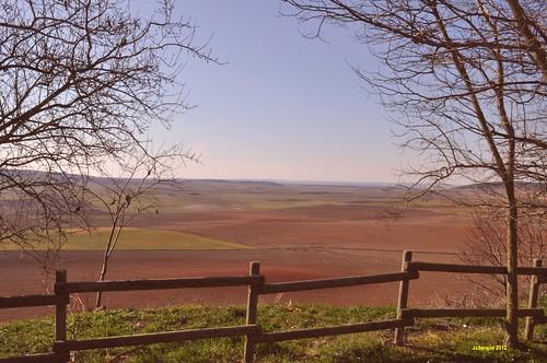 La Hinojosa - Landscape 2