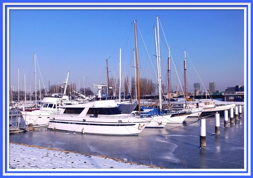 Antwerp / Left Bank: Frozen Marina