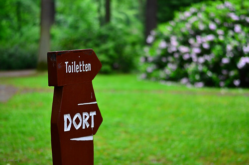 Hinweisschild Tannenwald