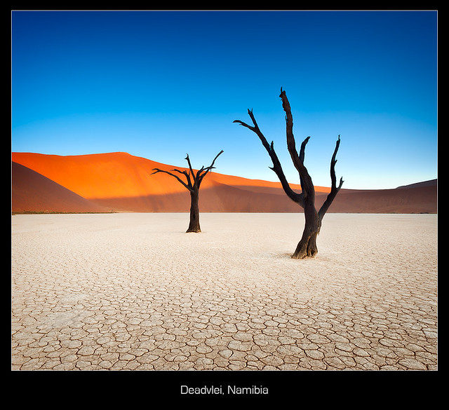 Deadvlei Abstract - Wide Angle Photography