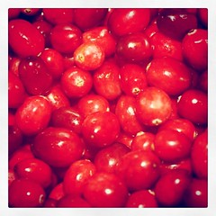 Cranberries just before they became sauce