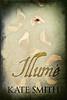 Illumé book cover