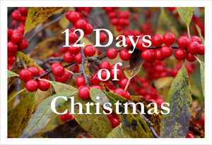12 Days of Christmas: Frugal Gifts for Classmates