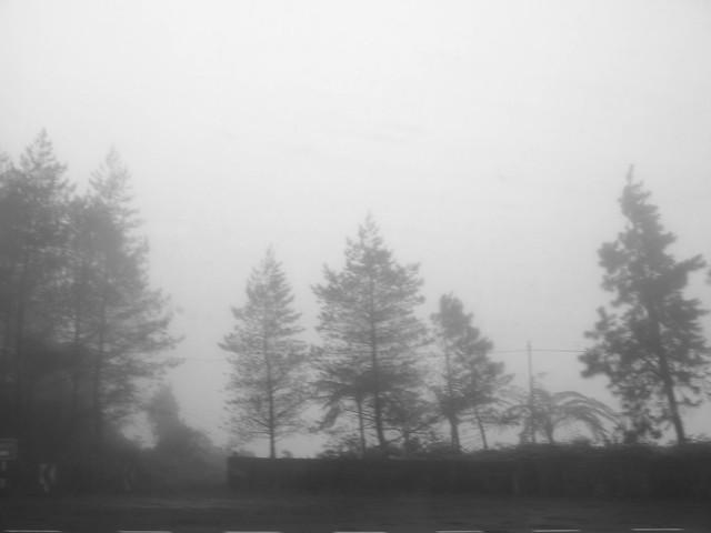 IMG_0850 Mist - Genting Highlands