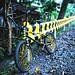 Beecycle by Yukihiko Goto