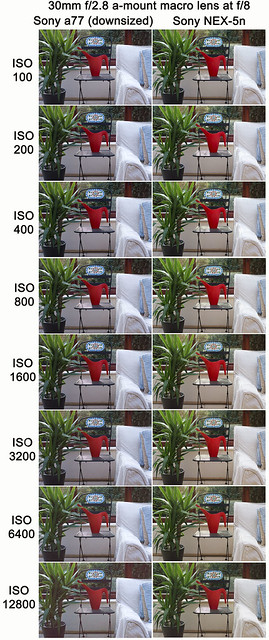 Noise comparison test between Sony a77 and Sony NEX-5n