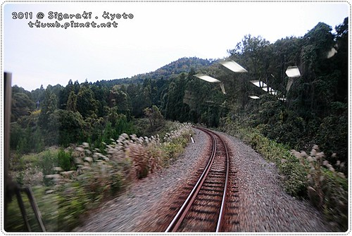 紫香樂民宿 (4).jpg